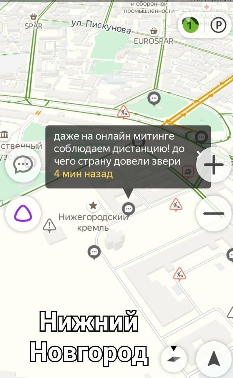 Виртуальный митинг докатился и до Ульяновска, фото-2