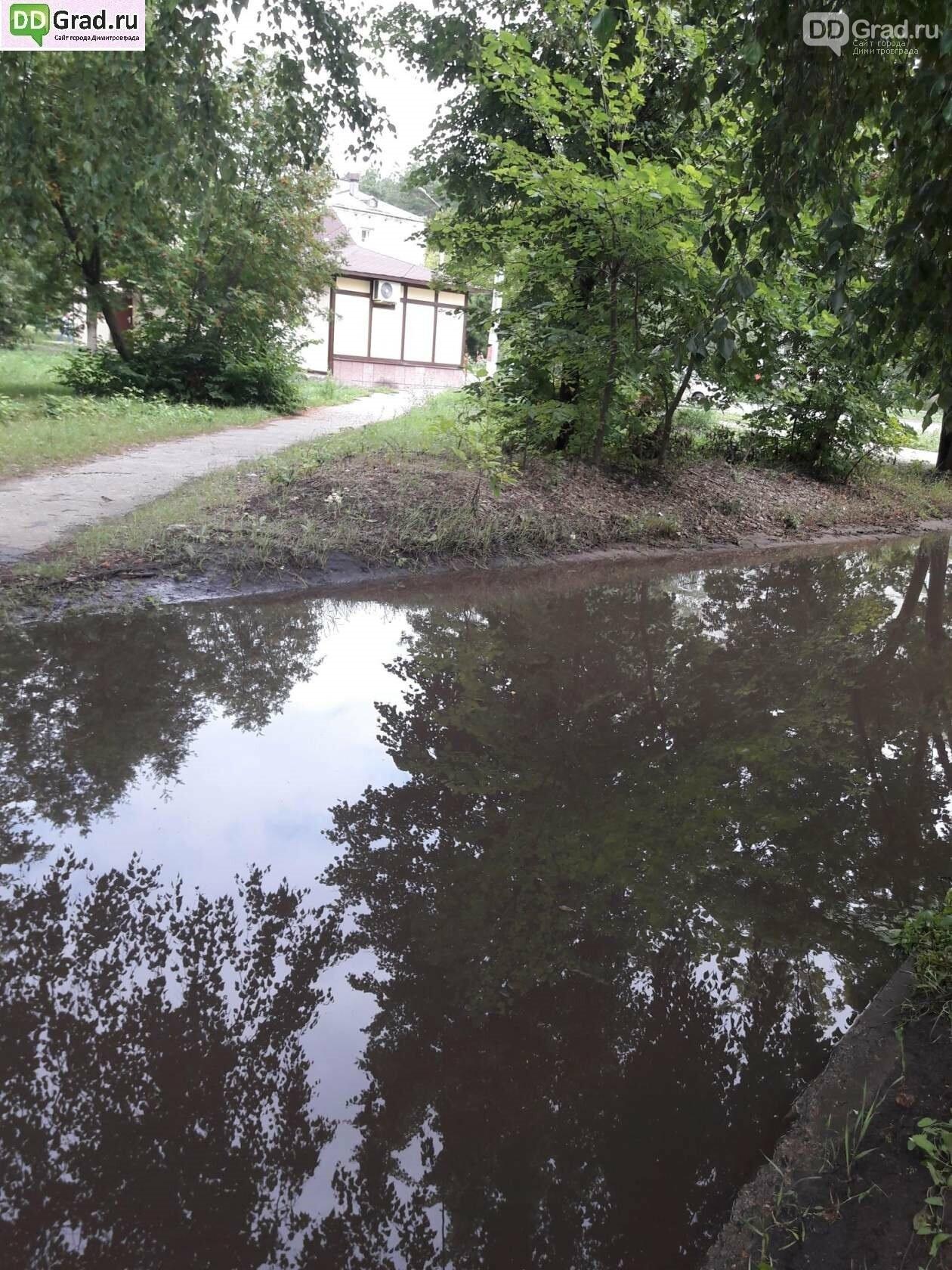 Течёт ручей, бежит ручей... Дороги в Димитровграде, фото-4