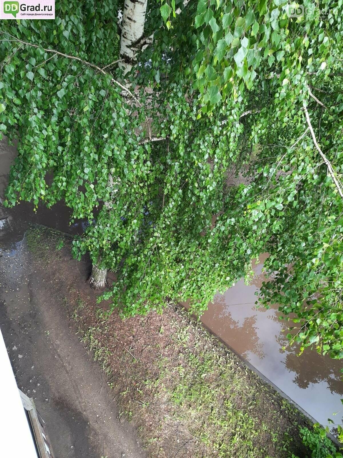 Течёт ручей, бежит ручей... Дороги в Димитровграде, фото-6