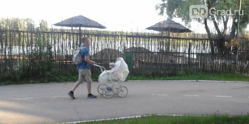 В Димитровграде зоны отдыха заполнены людьми, фото-1