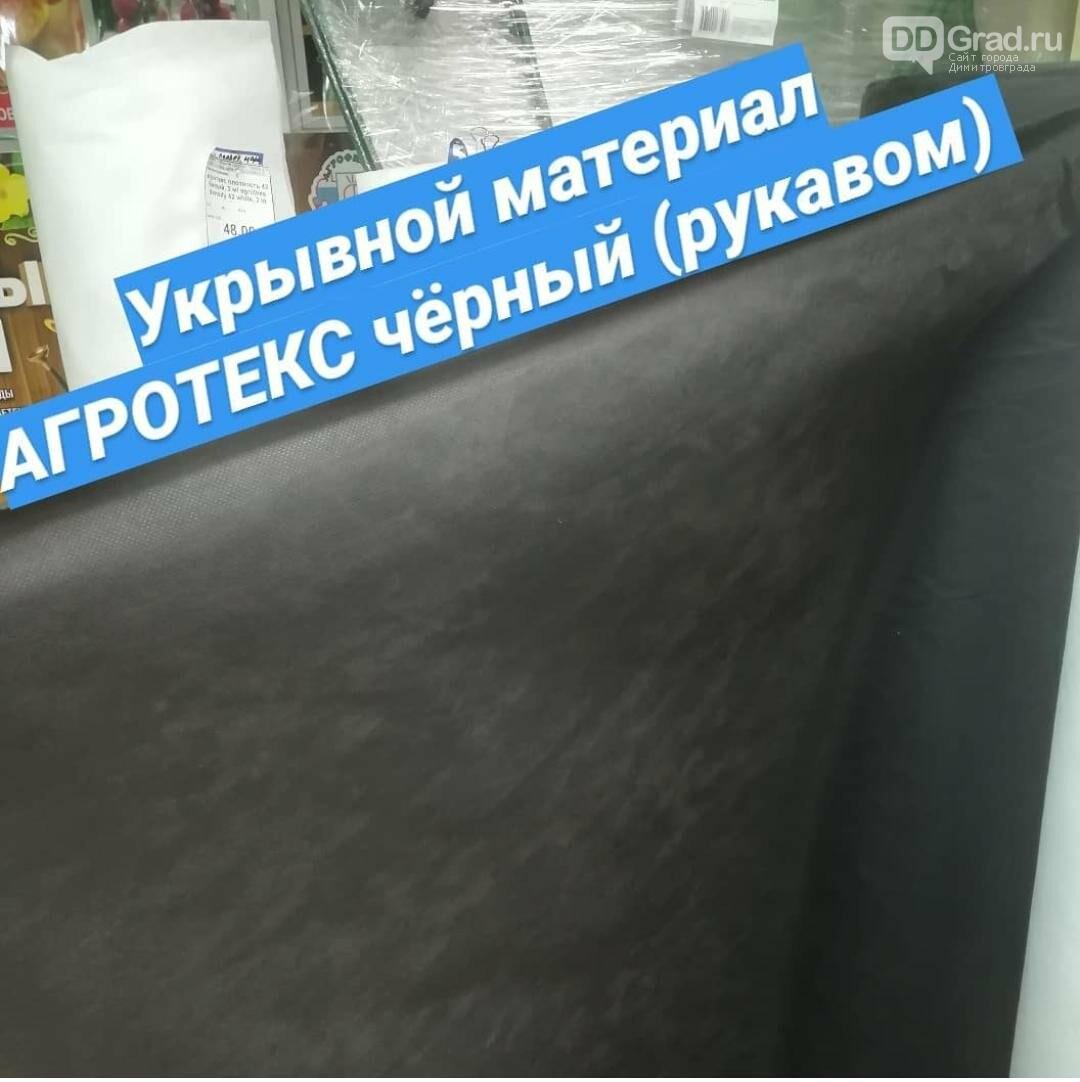 """""""Огородное Царство"""" – райское место для дачников Димитровграда, фото-23"""