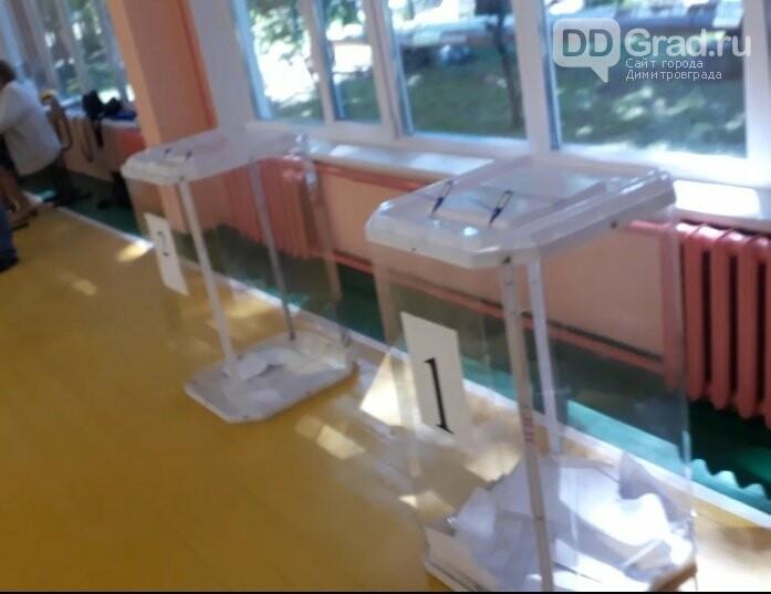 В Димитровграде проходит последний день голосования по Конституции РФ, фото-4