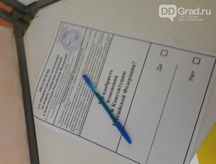 В Димитровграде проходит последний день голосования по Конституции РФ, фото-5