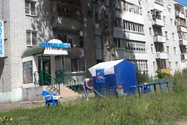 В Димитровграде проходит последний день голосования по Конституции РФ, фото-1