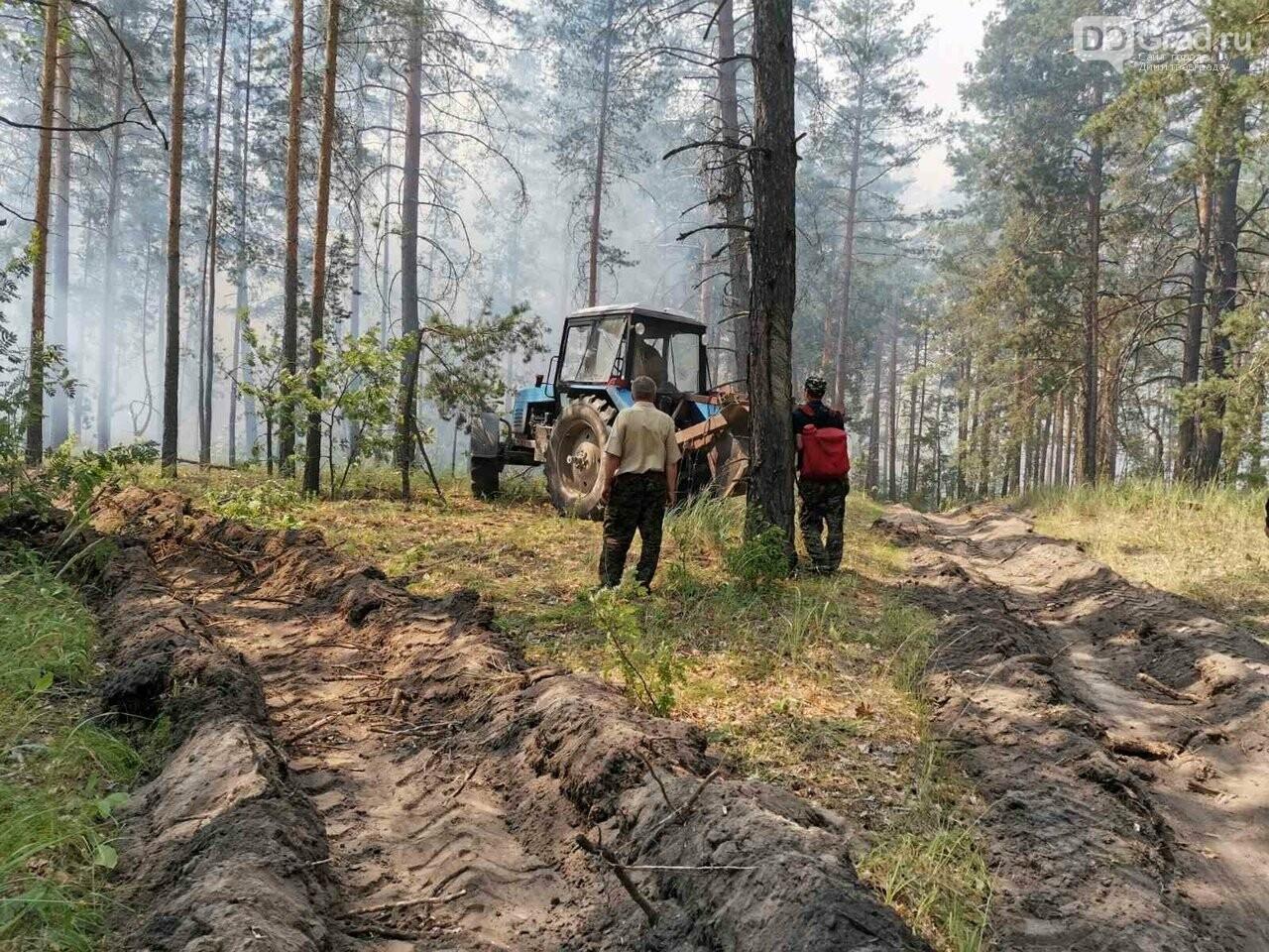 В Ульяновской области бушуют лесные пожары, фото-2
