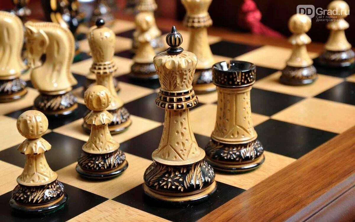 Димитровградцы могут принять участие в онлайн-турнирах по шахматам и шашкам, фото-1