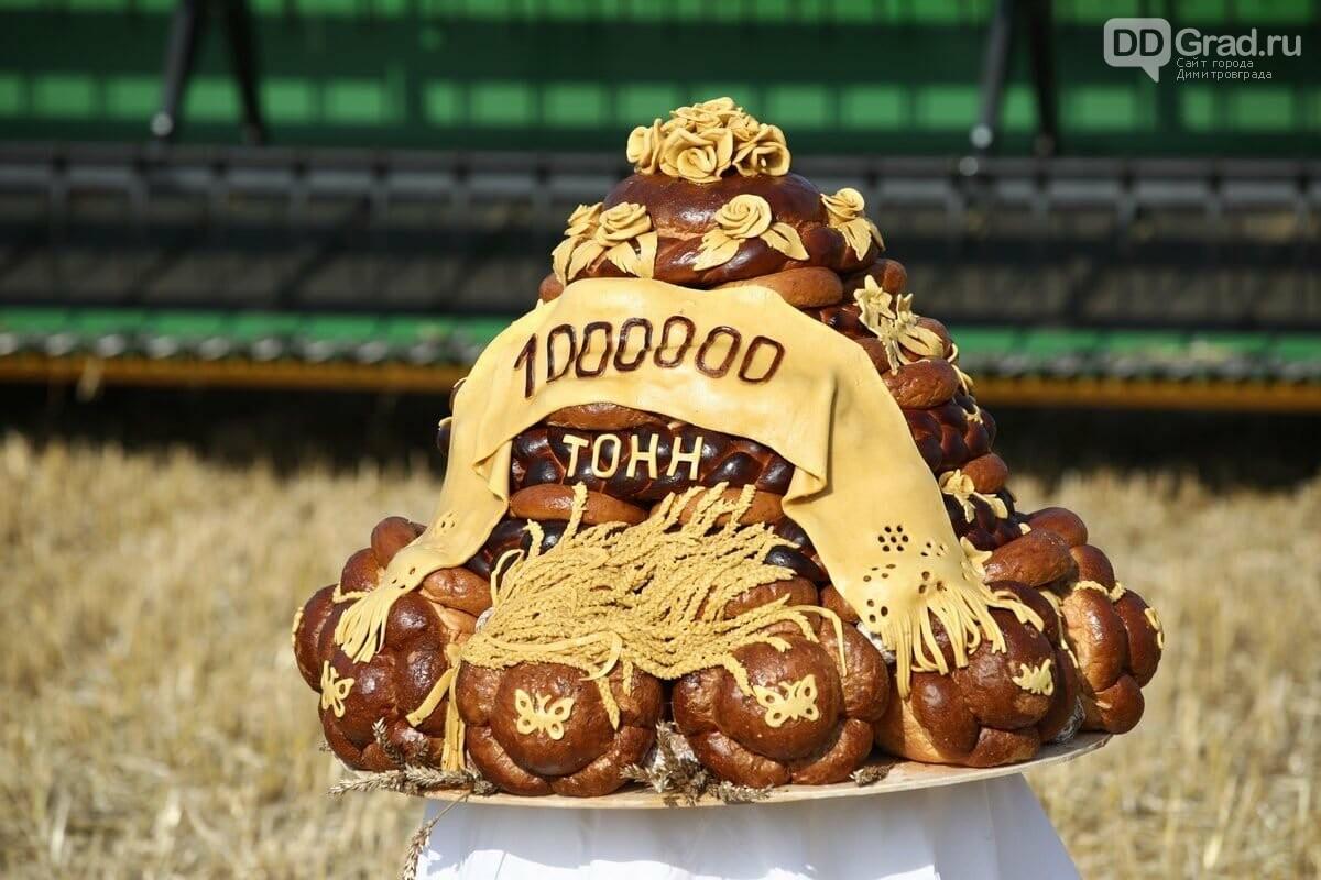 В Ульяновской области собрали более миллиона тонн зерна, фото-1