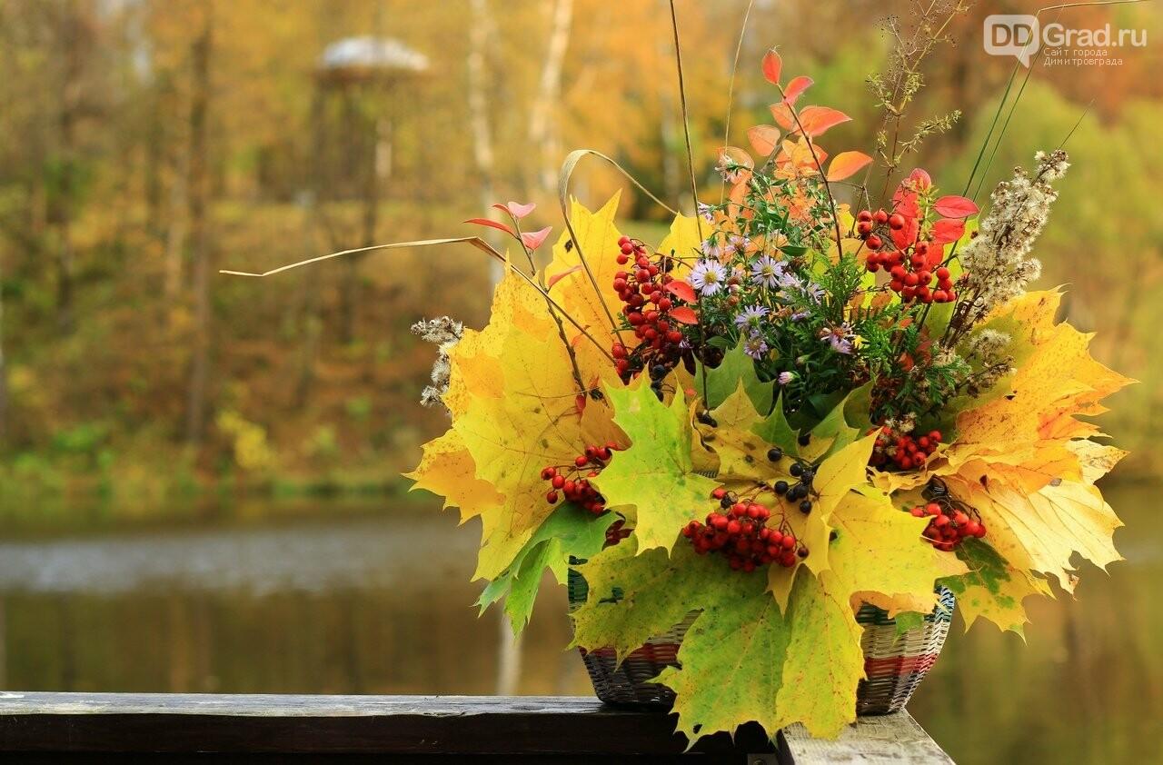 В Димитровграде можно принять участие в конкурсе «Осенний букет», фото-1