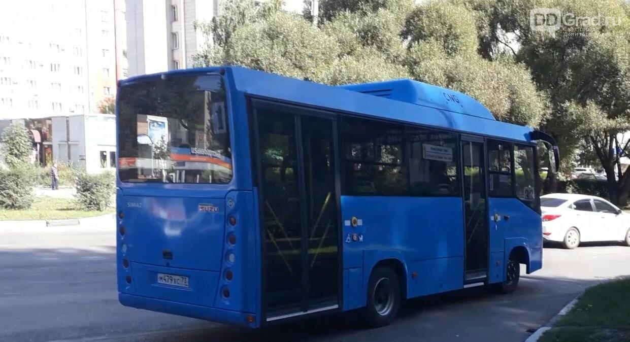 В Димитровград прибыла партия новых городских автобусов, фото-3