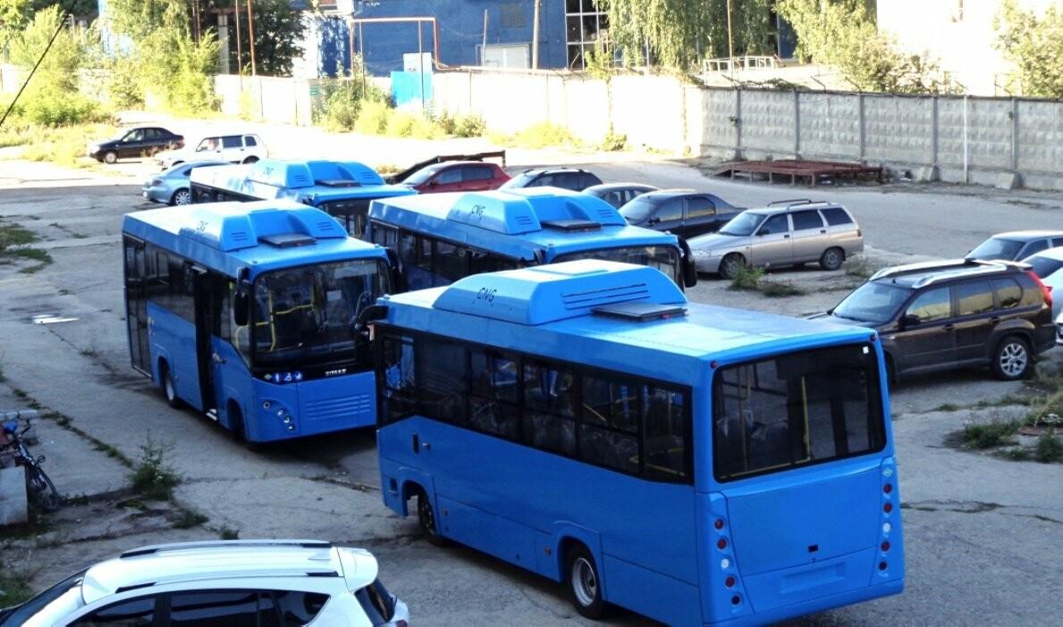 В Димитровград прибыла партия новых городских автобусов, фото-1