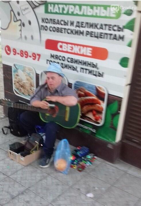 В Димитровграде появился свой менестрель, фото-1