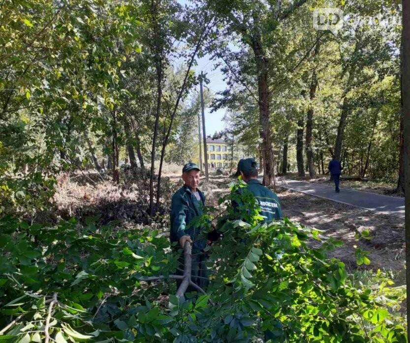 В Димитровграде провели благоустройство территории вокруг школы № 10, фото-1