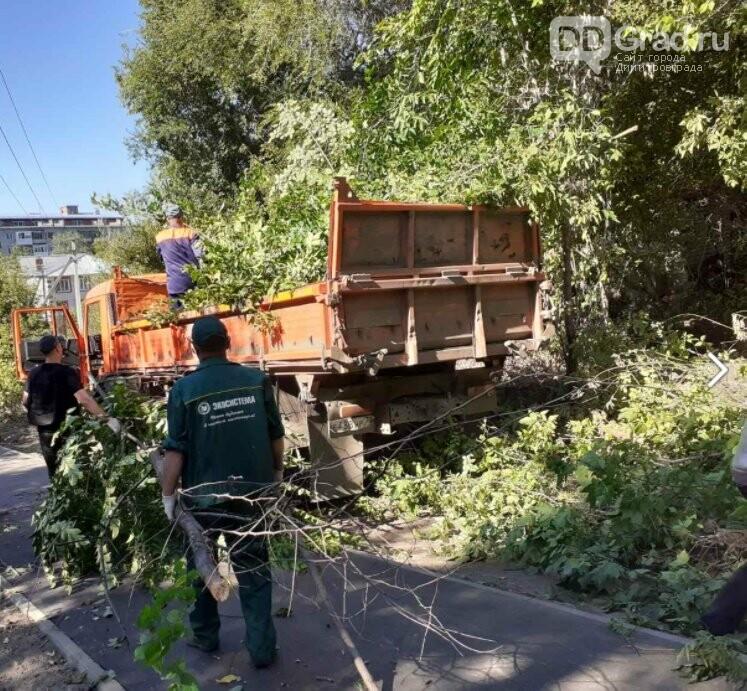 В Димитровграде провели благоустройство территории вокруг школы № 10, фото-4