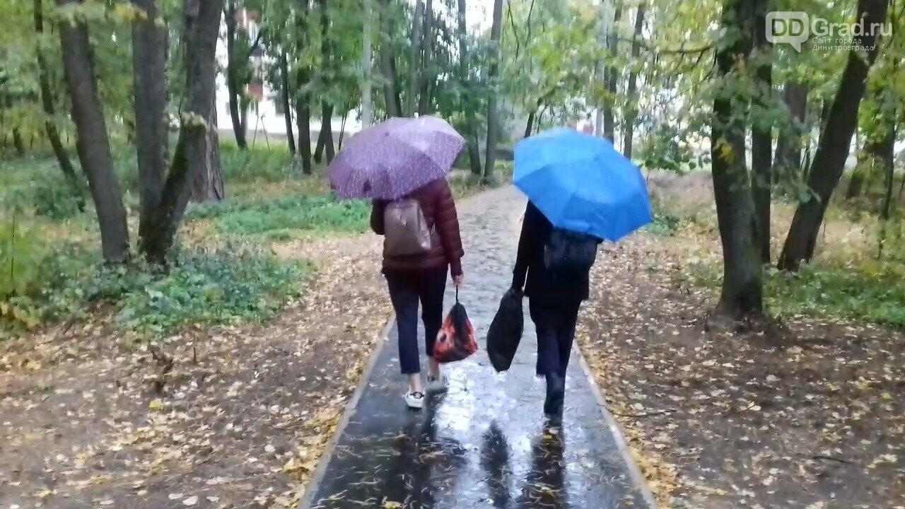 В Димитровграде появилась новая парковая зона, фото-5