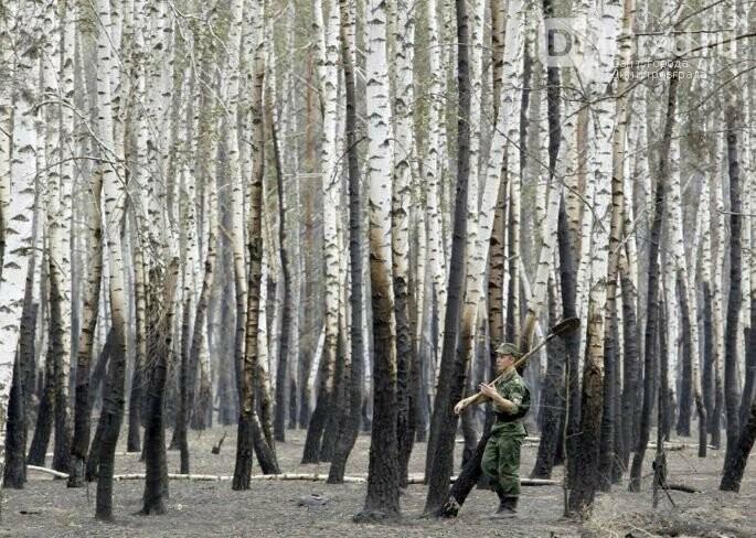 40 лет назад, под Сызранью произошла крупная трагедия, фото-4