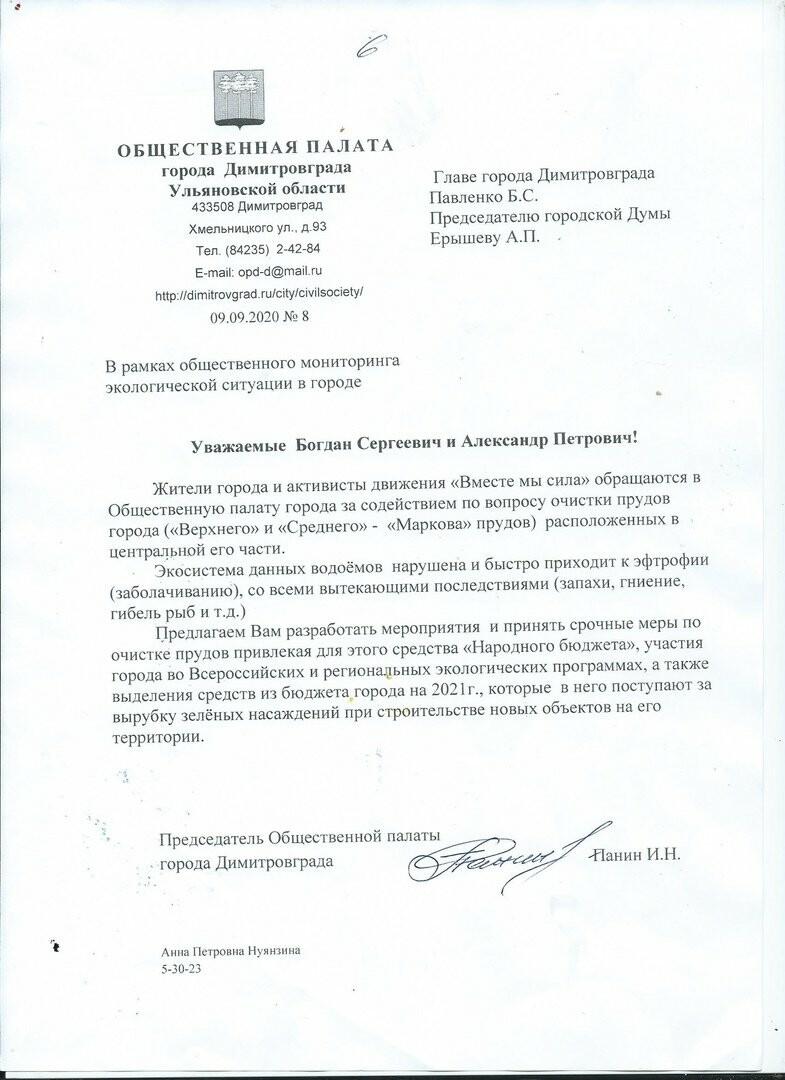 Димитровградские активисты заявили о необходимости незамедлительной очистки мелекесских прудов, фото-1