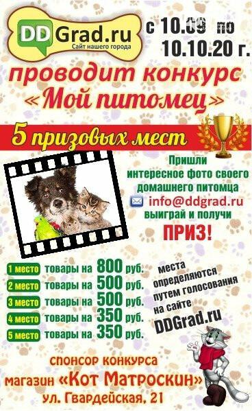 4 октября в Димитровграде пройдёт акция «Добрый доктор Айболит», фото-1