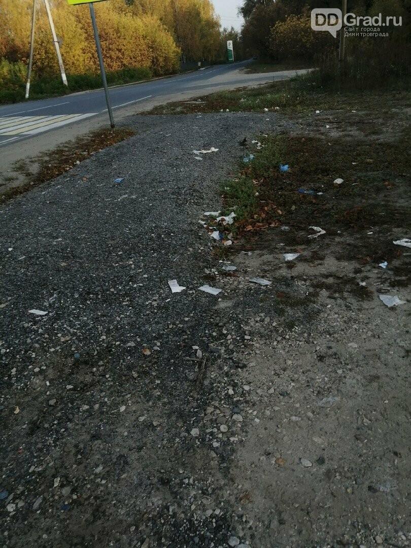 В Димитровграде очистили местность от малогабаритного мусора, фото-2, https://vk.com/youthdd?w=wall-55307933_1146925
