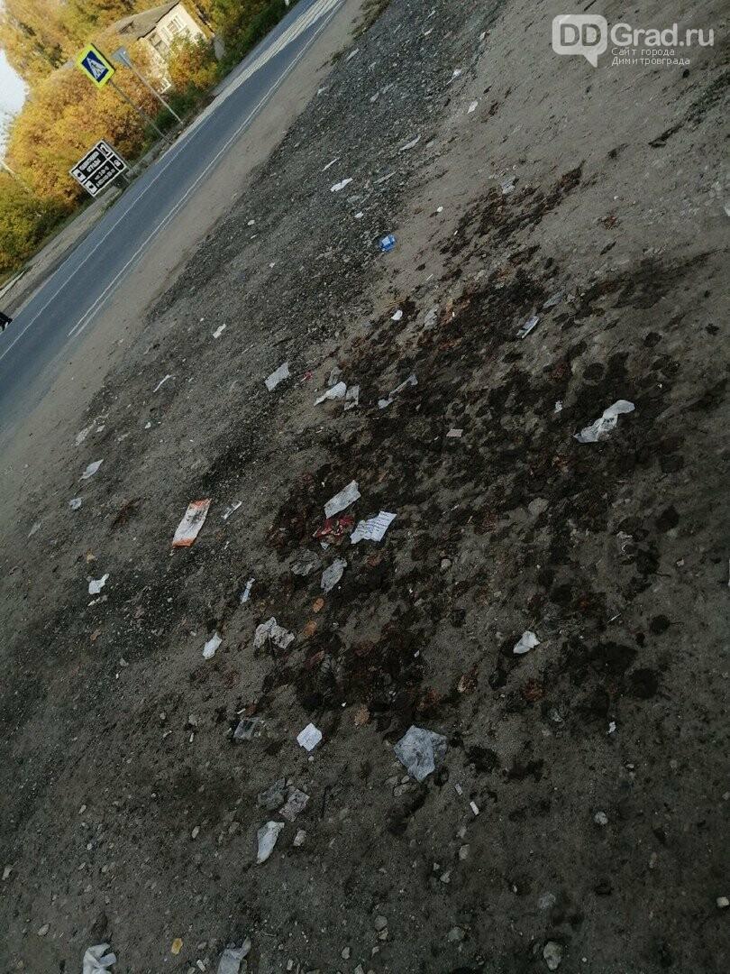 В Димитровграде очистили местность от малогабаритного мусора, фото-3, https://vk.com/youthdd?w=wall-55307933_1146925