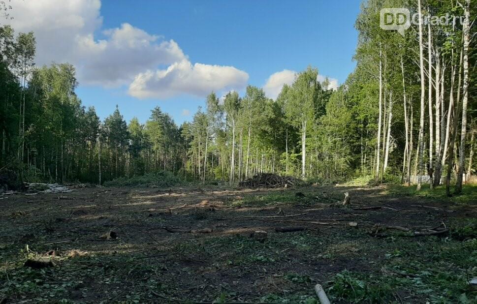 В Димитровграде будут продолжать хоронить умерших на кладбище посёлка Дачный, фото-2