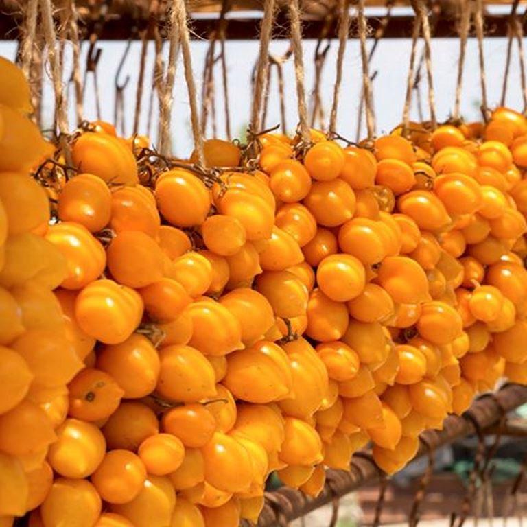 Томатная экзотика: сорта, которые могут украсить огороды димитровградцев, фото-5